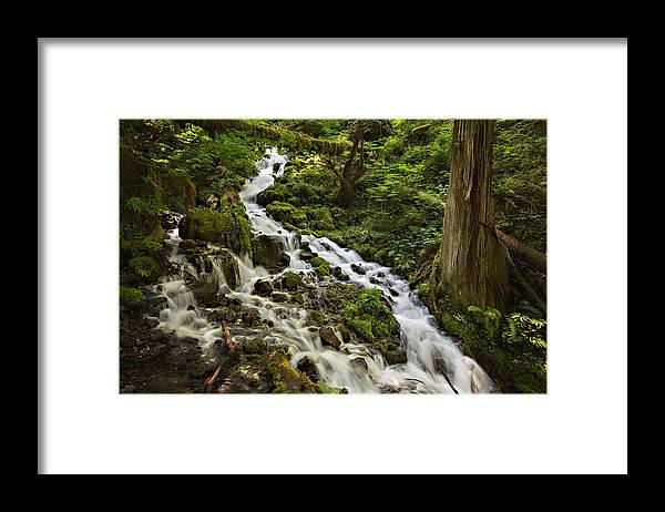 Wahkeena Creek Framed Print featuring the photograph Wahkeena Creek by Mary Jo Allen