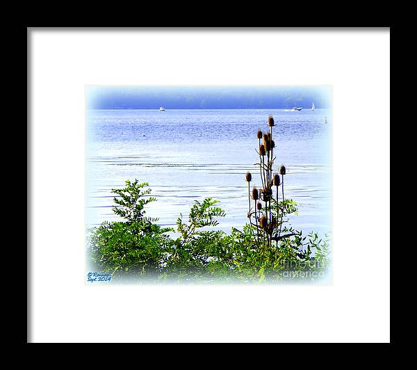 Waterscape Framed Print featuring the photograph Waters Edge by Rennae Christman