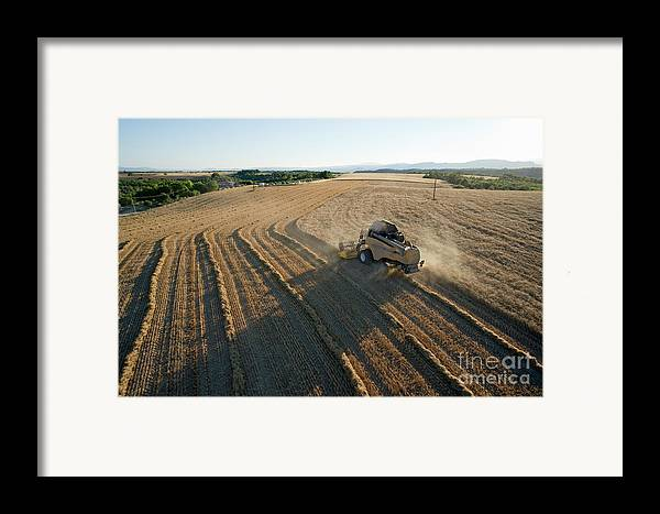 Abundance Framed Print featuring the photograph Wheat Harvest In Provence by Sami Sarkis
