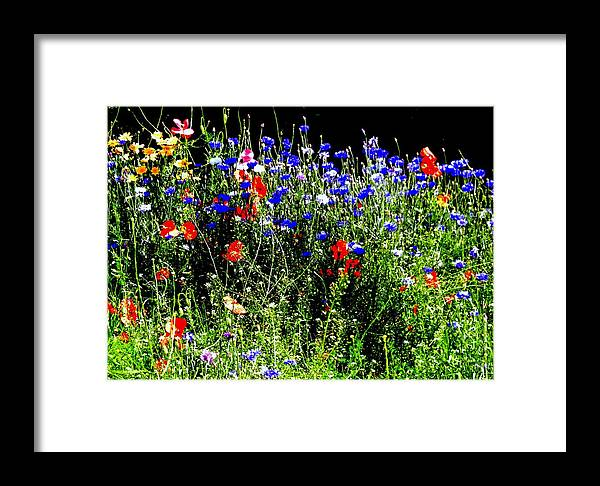 Nik Watt Framed Print featuring the photograph Wild Flowers by Nik Watt