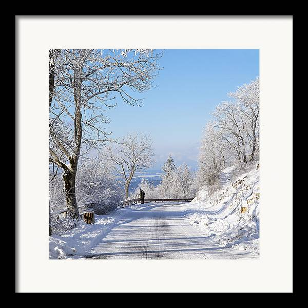 Europe Framed Print featuring the pastel Winter Tree Germany by Francesco Emanuele Carucci