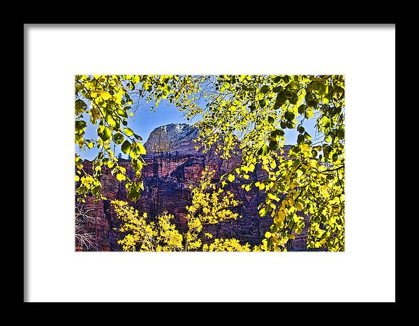 Zion National Park Utah Framed Print featuring the photograph Zion National Park by Jon Berghoff