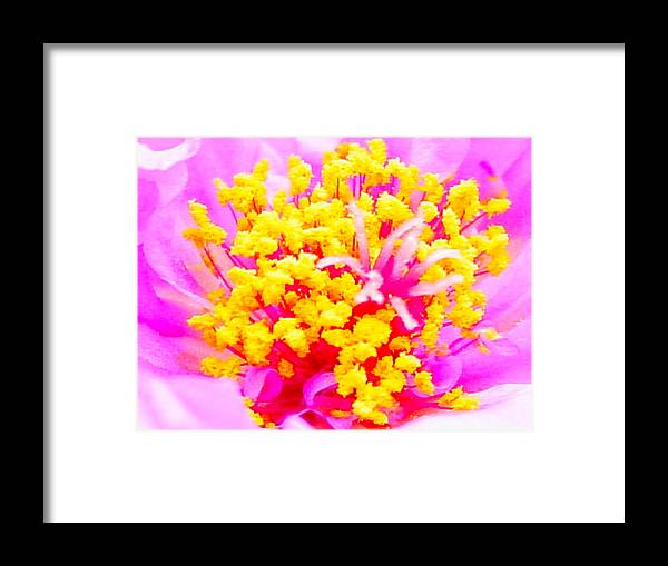 Framed Print featuring the photograph 10512np by Scotty P Tography