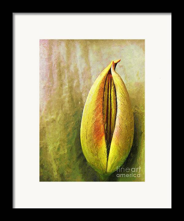 Framed Print featuring the painting Tulip by Odon Czintos