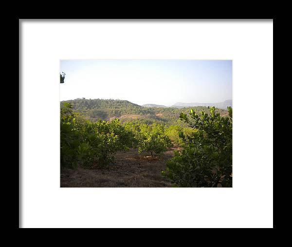 Landscape Framed Print featuring the digital art La Cashew by Shishir Simon