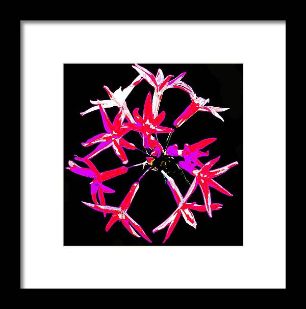 Framed Print featuring the photograph 12160 by Scotty P Tography