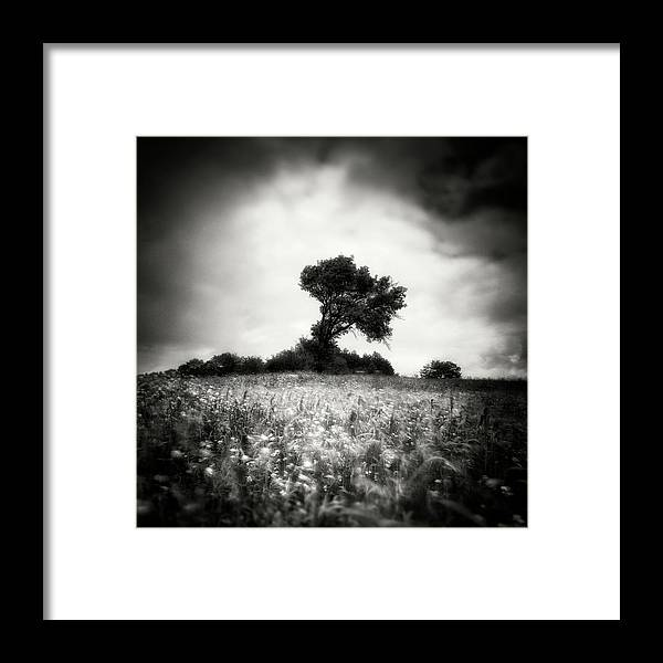 Istanbul Framed Print featuring the photograph ! by Yucel Basoglu