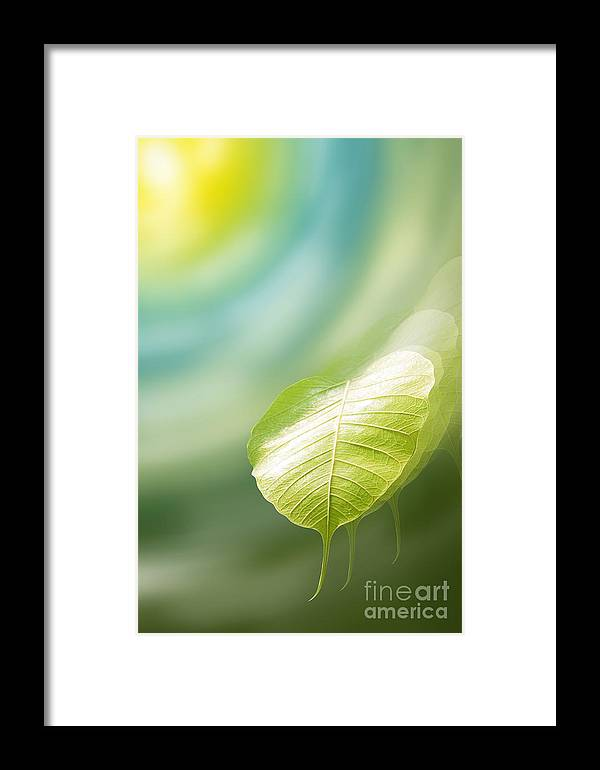 Art Framed Print featuring the mixed media Pho Or Bodhi by Atiketta Sangasaeng