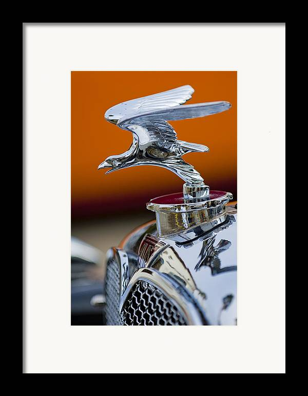 1932 Alvis Speed 20 Framed Print featuring the photograph 1932 Alvis Hood Ornament 2 by Jill Reger