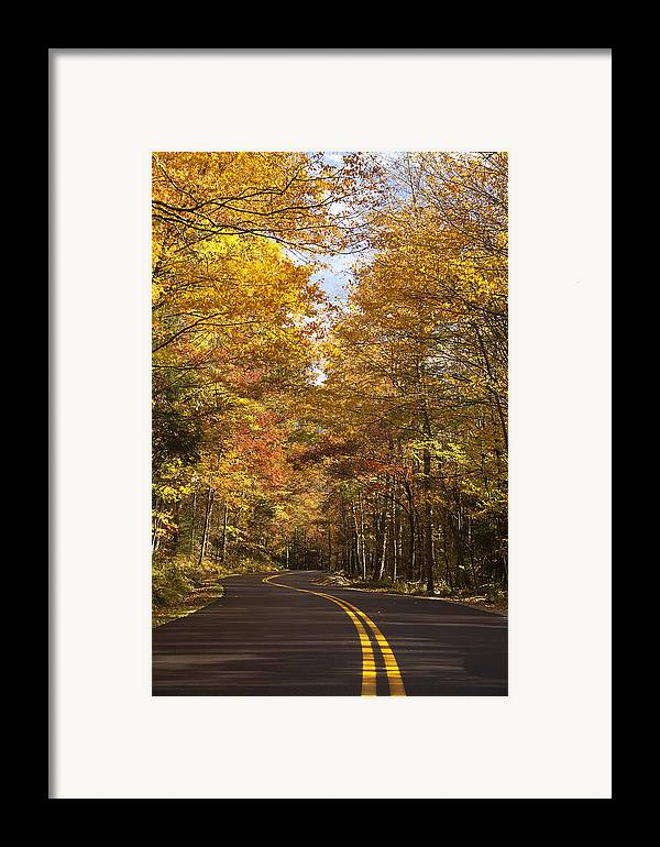 Road Framed Print featuring the photograph Autumn Drive by Andrew Soundarajan