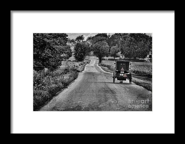Amish Framed Print featuring the photograph Black And White Buggy by David Arment