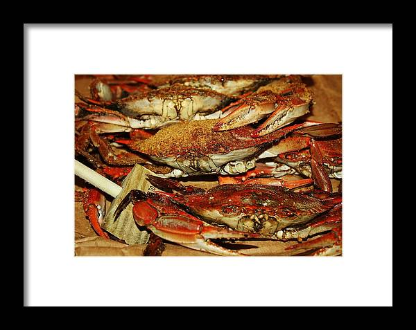 Crab Framed Print featuring the photograph Crabby by Paulette Thomas