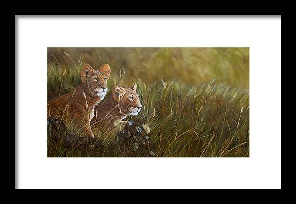 Lion Framed Print featuring the painting Curious Anticipation by Johanna Lerwick