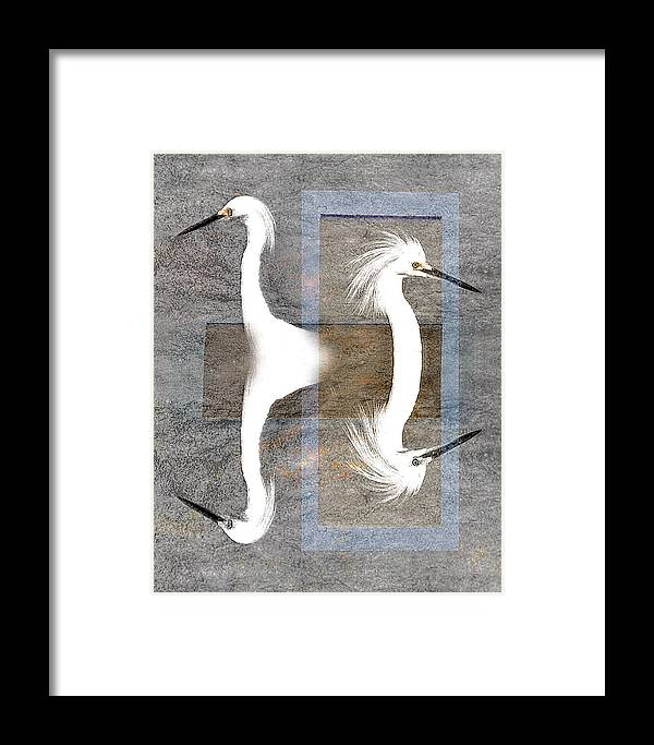 Abstract Framed Print featuring the photograph Divided Views by Stephen Warren