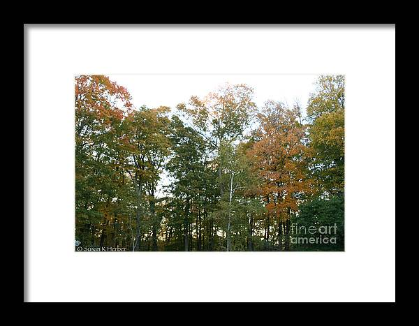 Flower Framed Print featuring the photograph Early Autumn by Susan Herber
