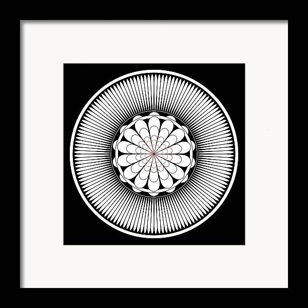 Floral Ornament Framed Print featuring the painting Floral Ornament by Frank Tschakert
