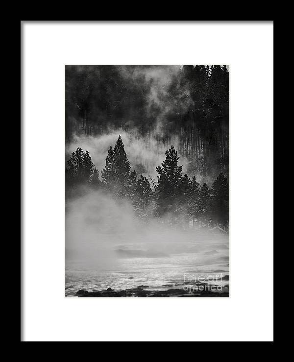 Yellowstone National Park Framed Print featuring the photograph In The Steam by Carolyn Fox