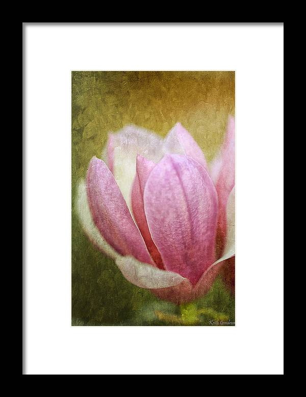 Japanese Framed Print featuring the photograph Japanese Magnolia by Keith Gondron