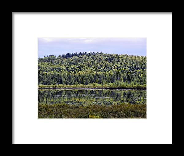 Lake Framed Print featuring the photograph Lake Reflection by Gene Cyr
