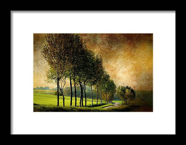 Forest Framed Print featuring the photograph Landscape by Heike Hultsch