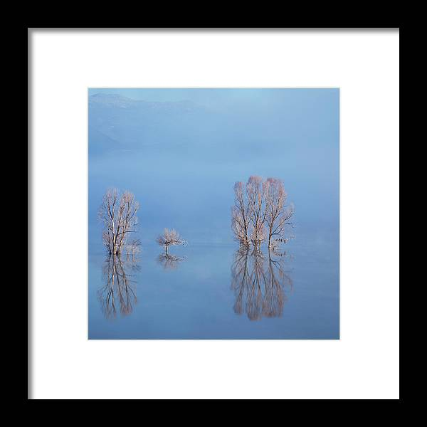 Water's Edge Framed Print featuring the photograph Misty Lake In Spring by Temizyurek