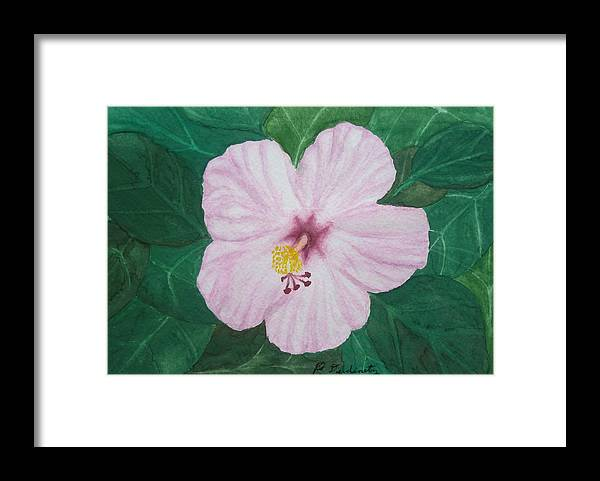 Hibiscus Framed Print featuring the painting Pink Hibiscus by Patty Dopkin
