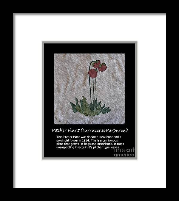 Pitcher Plant Framed Print featuring the photograph Pitcher Plant by Barbara Griffin