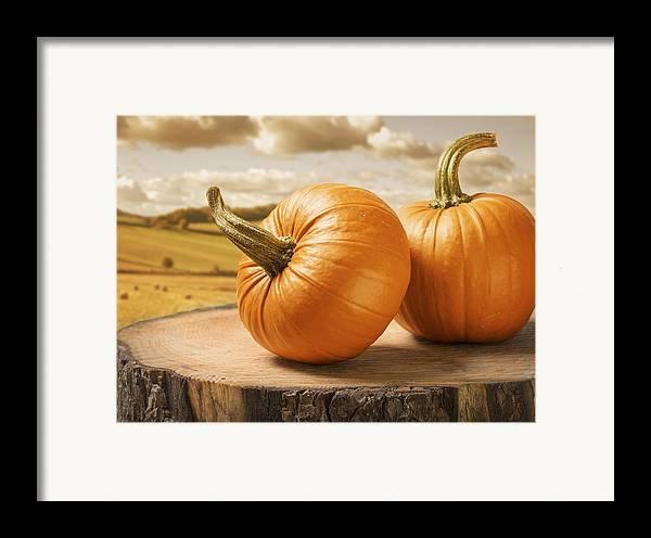 Pumpkin Framed Print featuring the photograph Pumpkins by Amanda Elwell