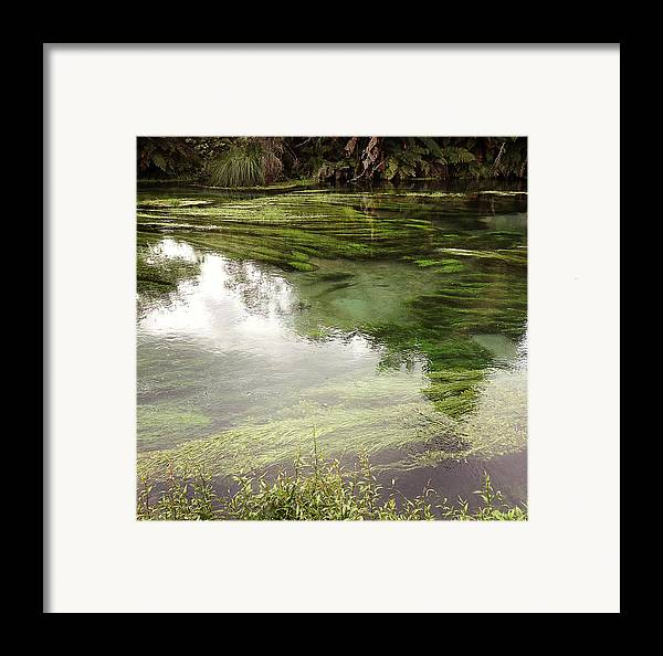 Marsh Framed Print featuring the photograph Spring Water by Les Cunliffe