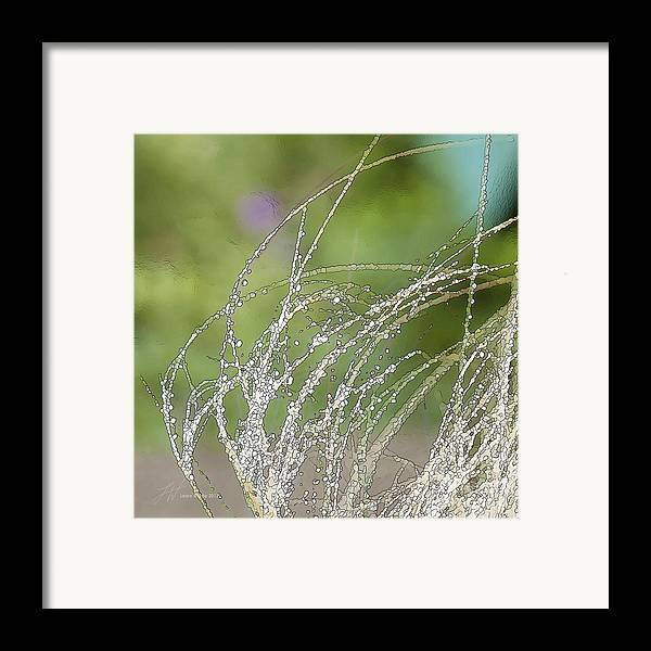 Grass Framed Print featuring the painting Summer Grass by Artist and Photographer Laura Wrede