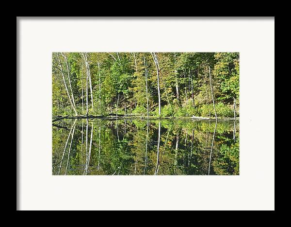 National Framed Print featuring the photograph Two Of A Kind by Frozen in Time Fine Art Photography