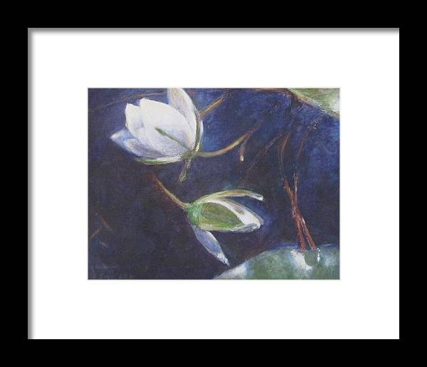 Water Lilies Framed Print featuring the painting Water Lilies by Seija Talolahti