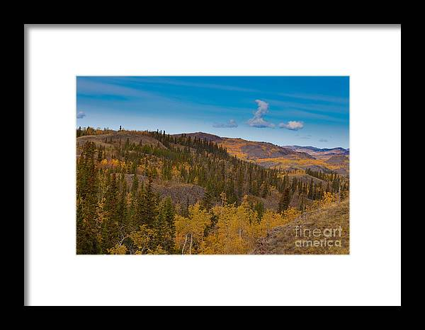 Adventure Framed Print featuring the photograph Yukon Gold - Fall In Yukon Territory Canada by Stephan Pietzko