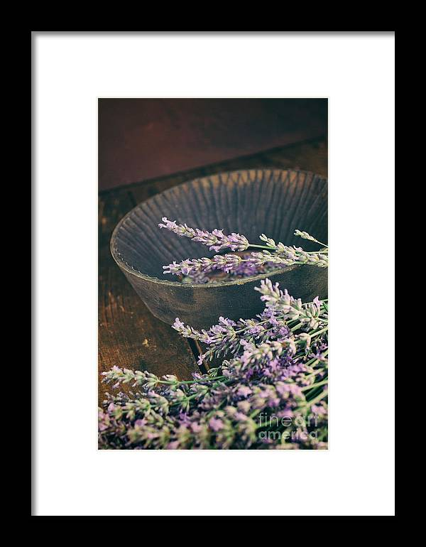 Alternative Framed Print featuring the photograph Fresh Lavender by Mythja Photography