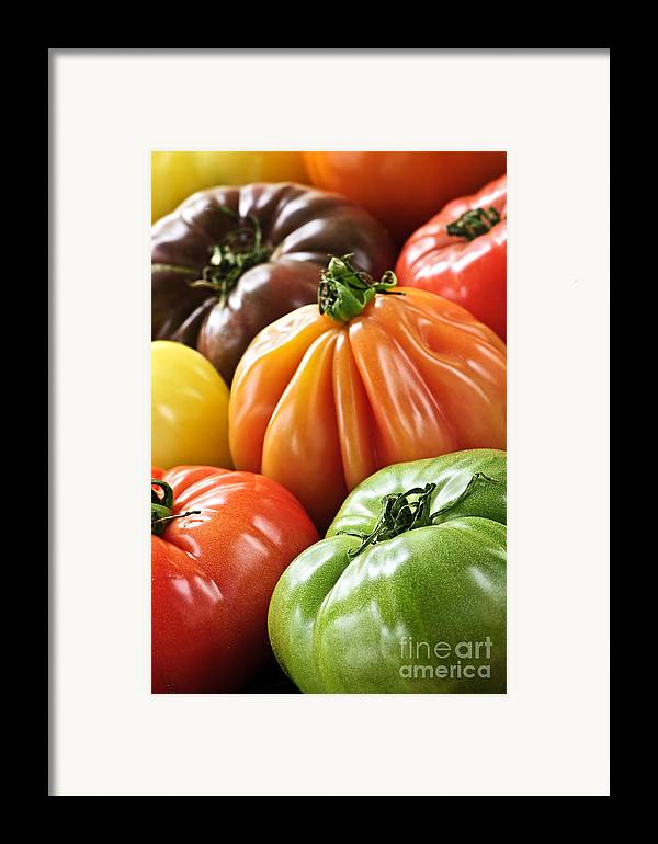 Heirloom Framed Print featuring the photograph Heirloom Tomatoes by Elena Elisseeva