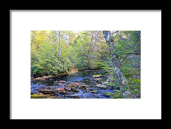 Color Framed Print featuring the photograph Pocono Mountain Stream Pennsylvania by A Gurmankin