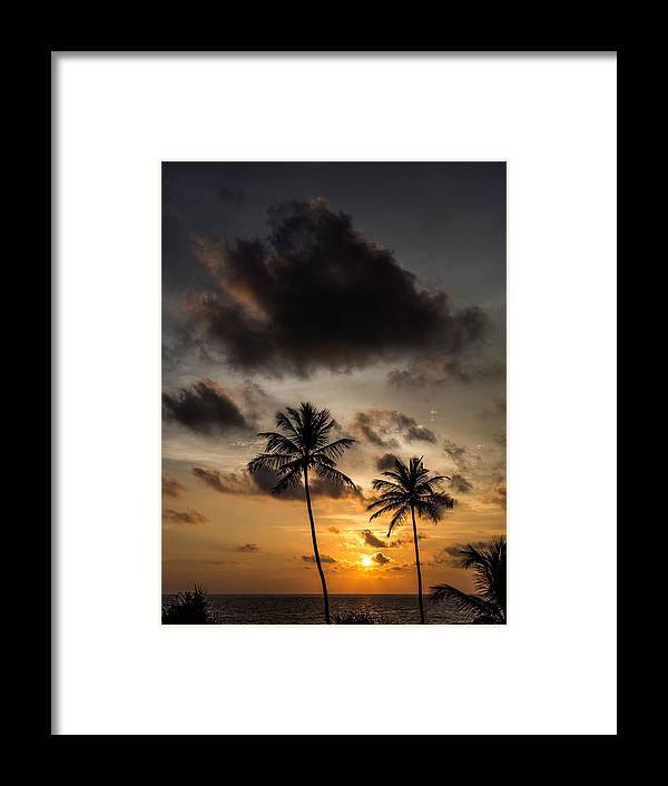Sri Lanka Framed Print featuring the photograph Sunset And Palm Tree by Guillaume Gauthereau