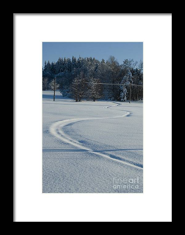Winter Framed Print featuring the photograph Winter by Sarka Olehlova