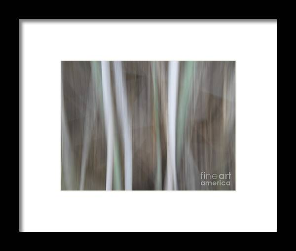 Framed Print featuring the photograph 32 by Ofer MizraChi