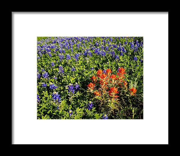 Framed Print featuring the photograph 32112nd by Scotty P Tography