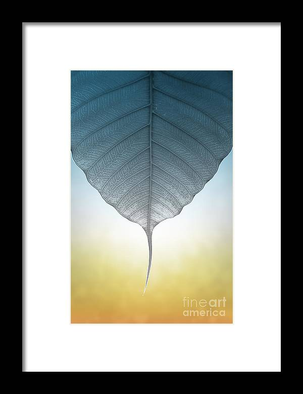 Abstract Framed Print featuring the photograph Pho Or Bodhi by Atiketta Sangasaeng