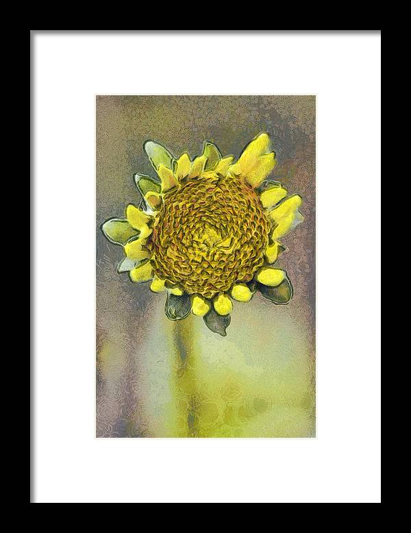 Spring Framed Print featuring the painting The sunflower by Odon Czintos