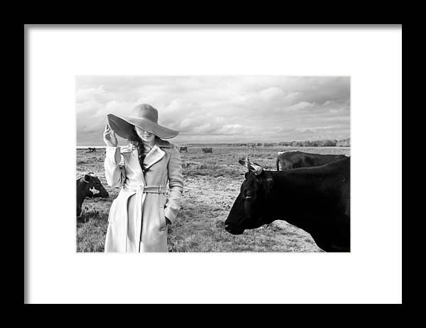 Cow Framed Print featuring the photograph Untitled 4 by Mikhail Potapov