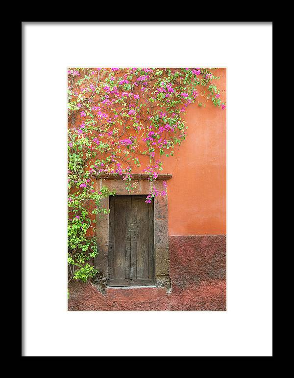 Bougainvillea Framed Print featuring the photograph Mexico, San Miguel De Allende by Jaynes Gallery