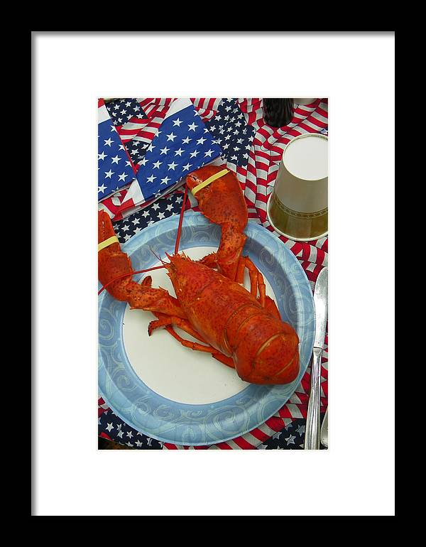 Lobster Framed Print featuring the photograph 4th Of July Camp Guest by Georgia Hamlin