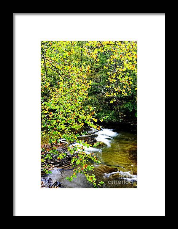 Cherry Falls Framed Print featuring the photograph Cherry Falls Elk River by Thomas R Fletcher
