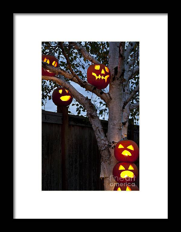 31st Framed Print featuring the photograph Pumpkin Escape Over Fence by Jim Corwin