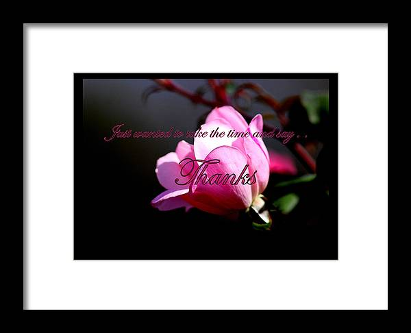 Pink Framed Print featuring the photograph Thank You by Travis Truelove