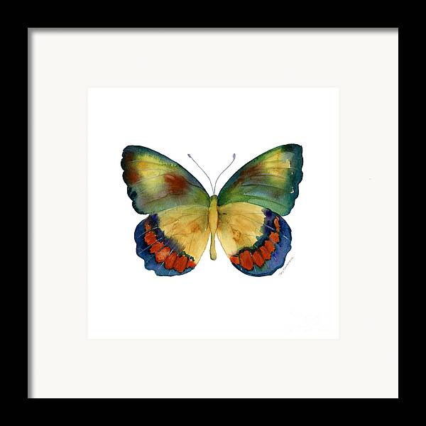 Bagoe Butterfly Framed Print featuring the painting 67 Bagoe Butterfly by Amy Kirkpatrick