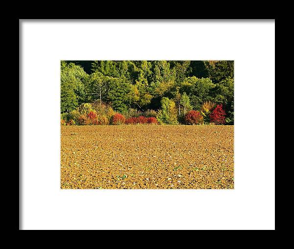 Field Framed Print featuring the photograph colors of Autumn by Pavel Jankasek